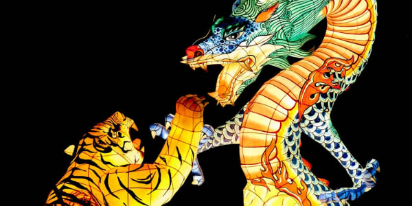 Dragon Tiger : 인기있는 라이브 카지노 게임